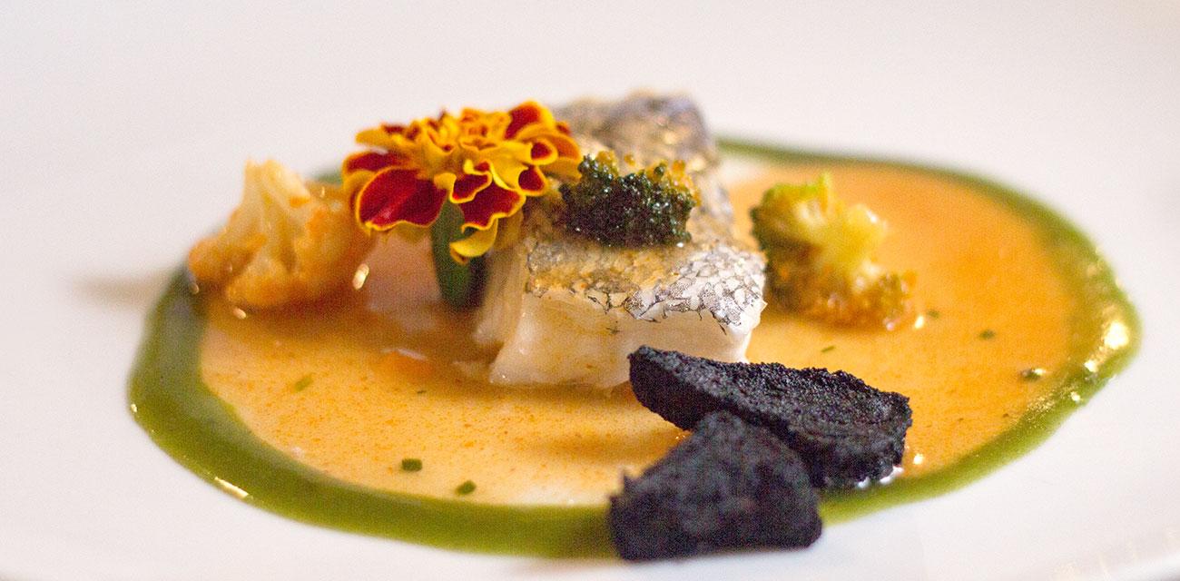 Merluza Austral Chile soasada sobre guiso de calamares, gel de codium y carbón comestible